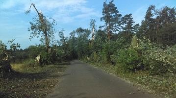 Zniszczenia spowodowane przez burze w dniu 10.08.2017