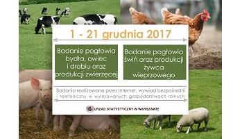 Badania rolne w dniach od 1 do 21 grudnia 2017 r.